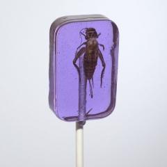 HOTLIX Леденец с настоящим сверчком со вкусом винограда 31гр